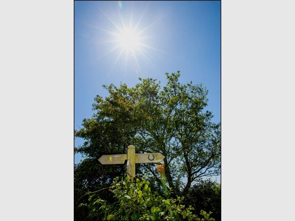 Contrejour Signpost