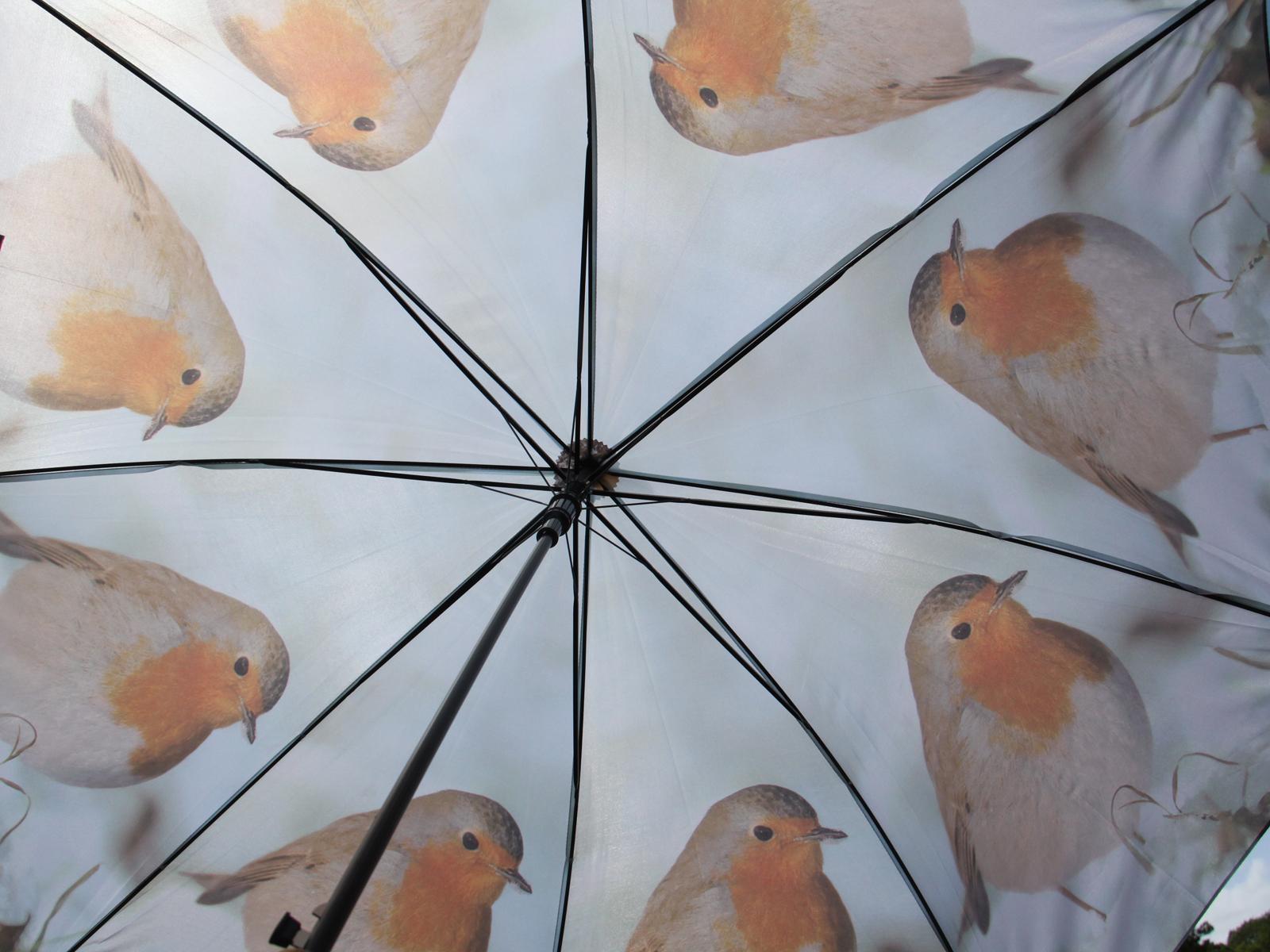 looking up umbrella